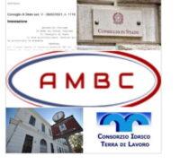 ambc_consorz_inerzia